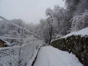 les chemins sous la neige